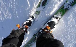 Лучшие бренды горнолыжных ботинок