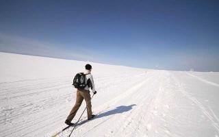 Как правильно выбрать лыжи и палки по росту