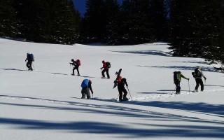 Скистоп — важный компонент крепления лыж