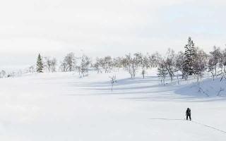 Виды классических лыжных ходов, их особенности и достоинства