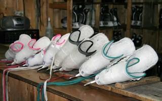 Как выбрать коньки: критерии выбора фигурных, хоккейных и прогулочных коньков