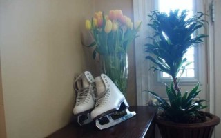 Пластиковые хоккейные коньки