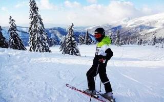 Горные лыжи Head — обзор