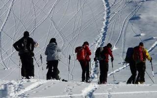 Повороты на лыжах — техника выполнения