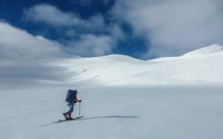 Смола для лыж — как выбрать?