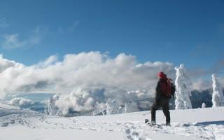 Лыжи и снегоступы: выбор охотничьего снаряжения