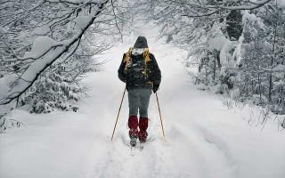 Отличие классических лыж от коньковых