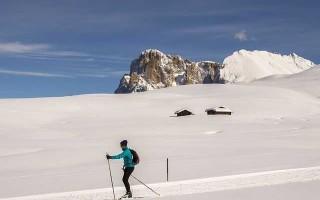 Лыжи Мадшус — особенности выбора