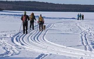 Все о маркировке лыж фишер конькового хода