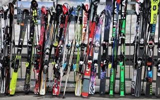 Из какой древесины делают лыжи