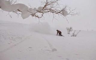 Особенности сноубордов Gnu