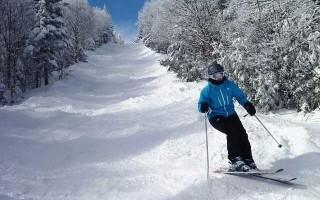 Лыжи «Dynamic» — для всех видов катания