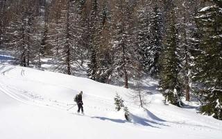 Рейтинг горных лыж Vsnege