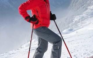 Одношажный ход на лыжах
