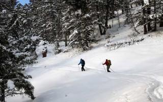 Цикля для лыж: способы, применение, польза