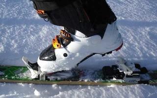 Горнолыжные ботинки Tecnica