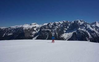 Основные характеристики и разновидности горных лыж