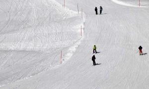Виды лыжного спорта