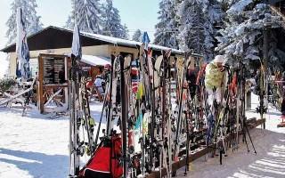 Выбор универсальных лыж