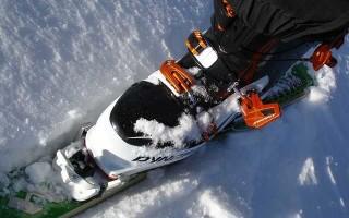 Лыжные ботинки Spine