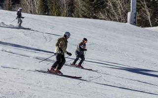 Двухшажный ход на лыжах