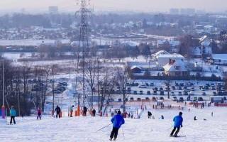 Лыжи Fisher SC Skate: история и особенности